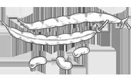 Proteínas de origen vegetal